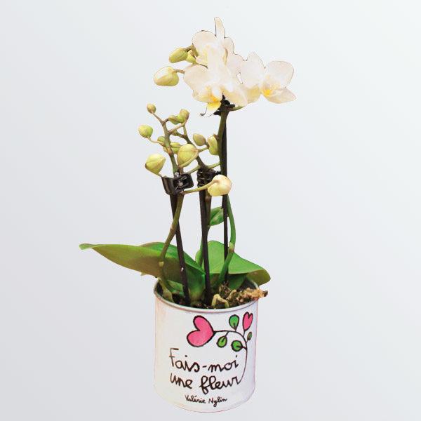 Pot de fleurs Fais moi une fleur-809