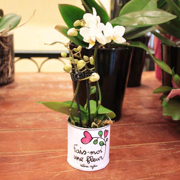 Pot de fleurs Fais moi une fleur-807