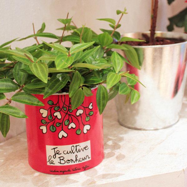 Pot de fleurs Je cultive le bonheur-810